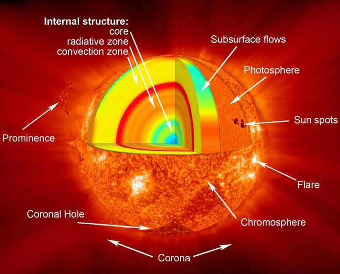sun-section.jpg