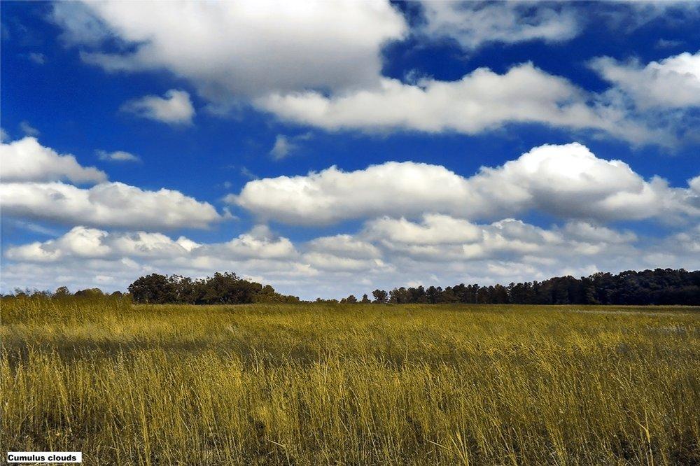 2 Cumulus clouds.jpg