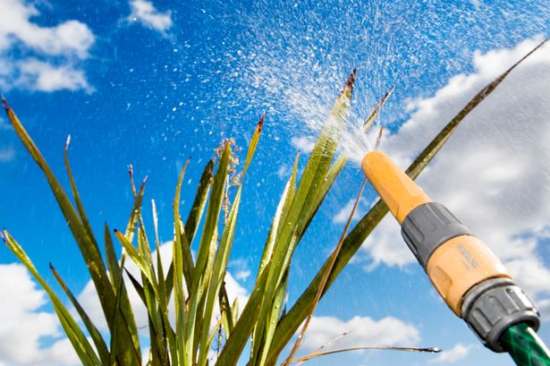 Hose pipe ban in place for 16 county's in Ireland until the 30th of September