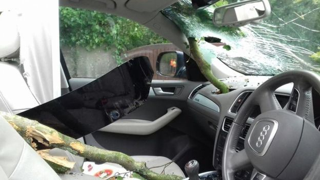 Dentist David Gwyer was injured when a tree smashed through the roof of his car