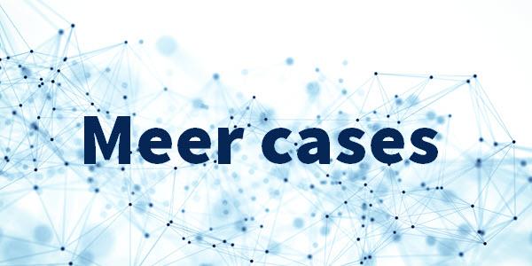 meer-cases.jpg