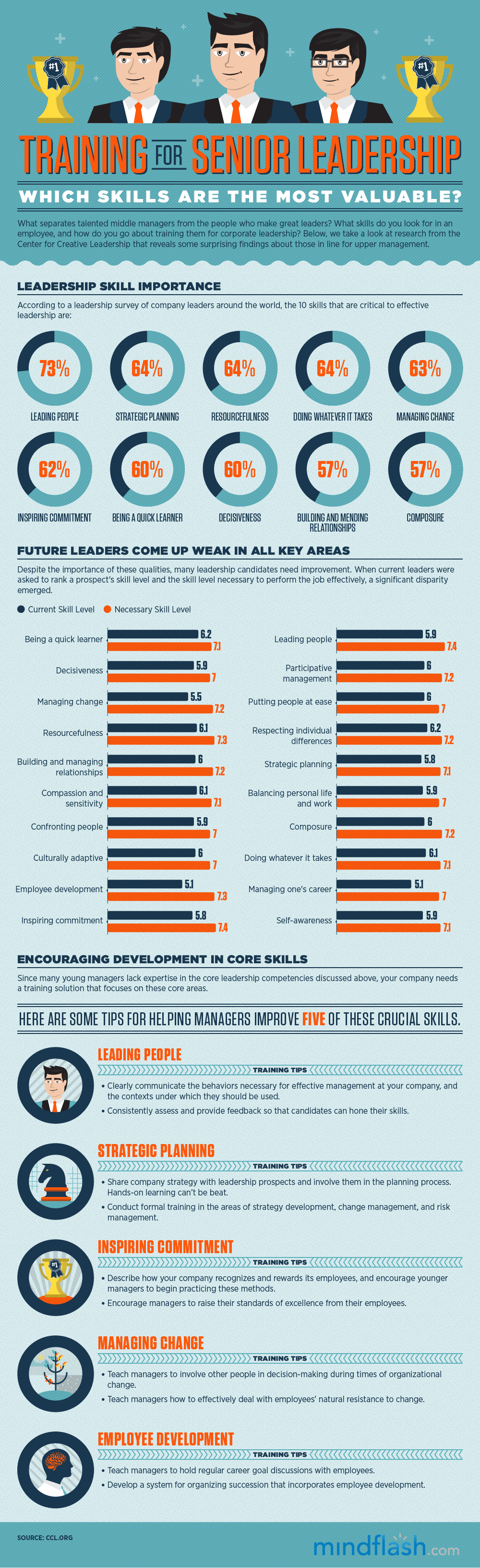 Training-For-Senior-Leadership-infographic.png