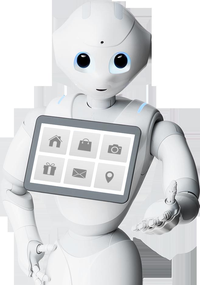 Softbank Robotics Bot Freak