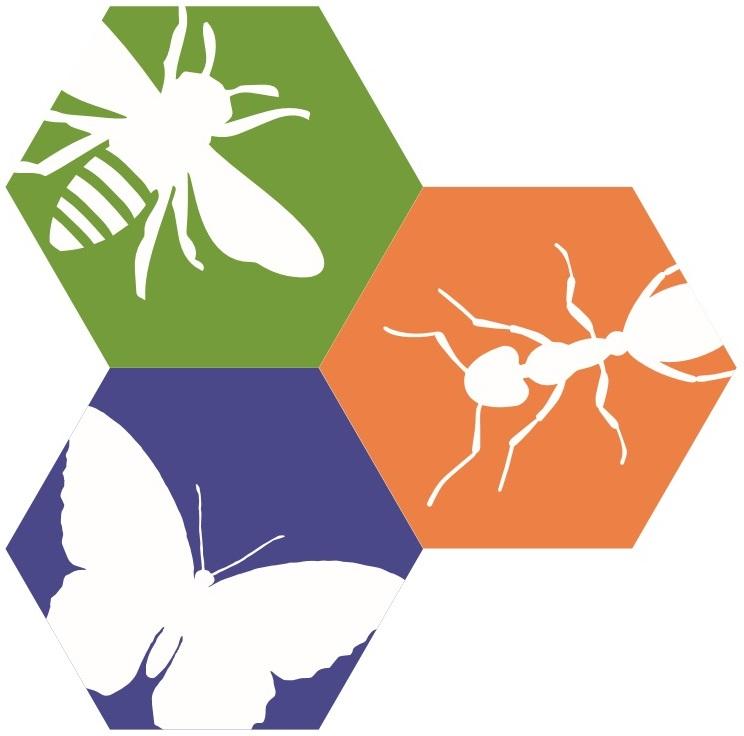 IBP logo.jpg