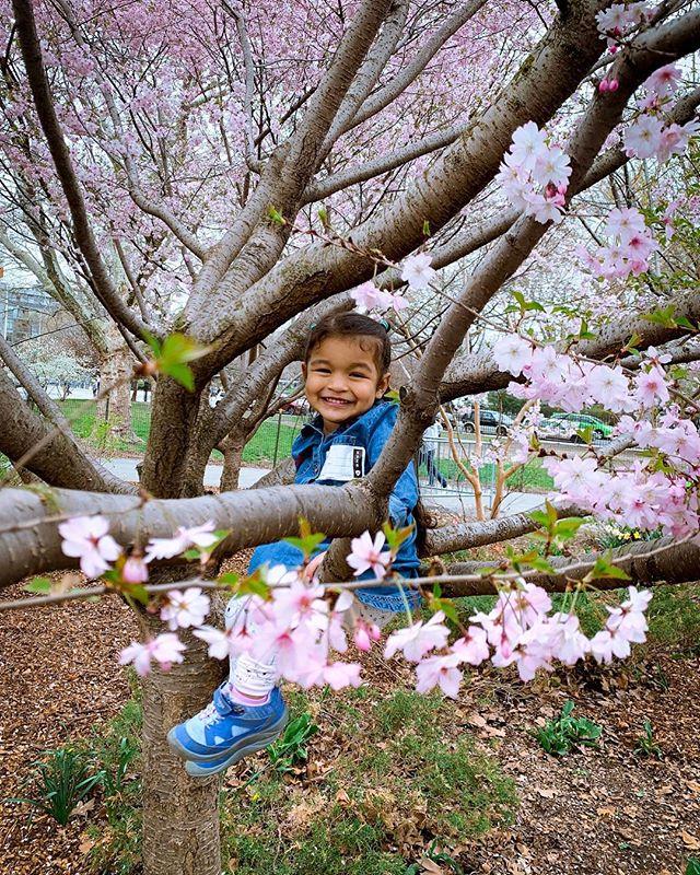 Spring Time 💕