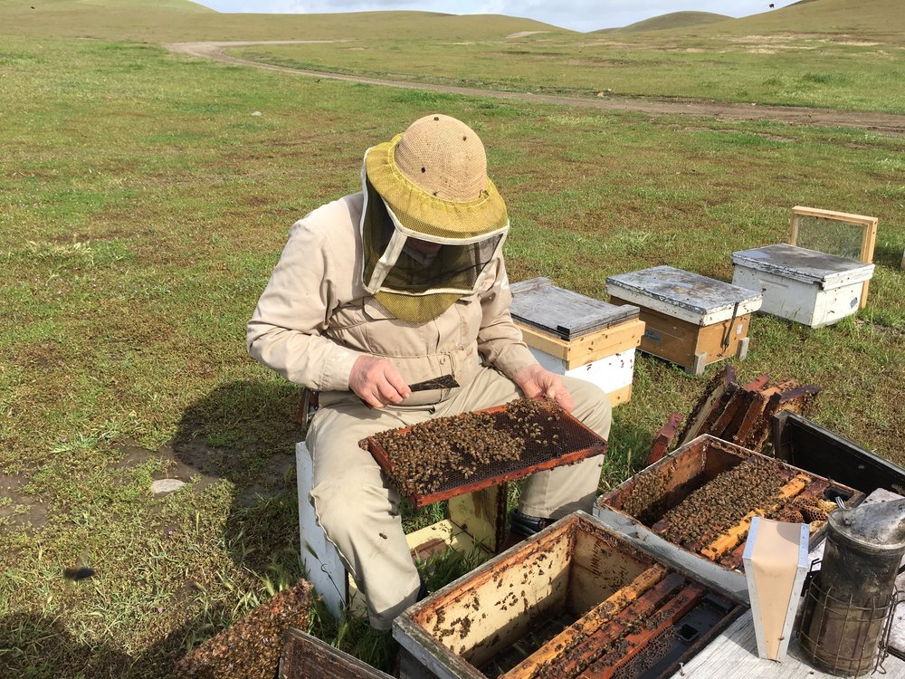 When it seems as though you have saturated yourself with information, there is something new to learn and adopt in to practices. Bee keeping is a growing and evolving industry, it's important for bee keepers to stay informed, current and connected.
