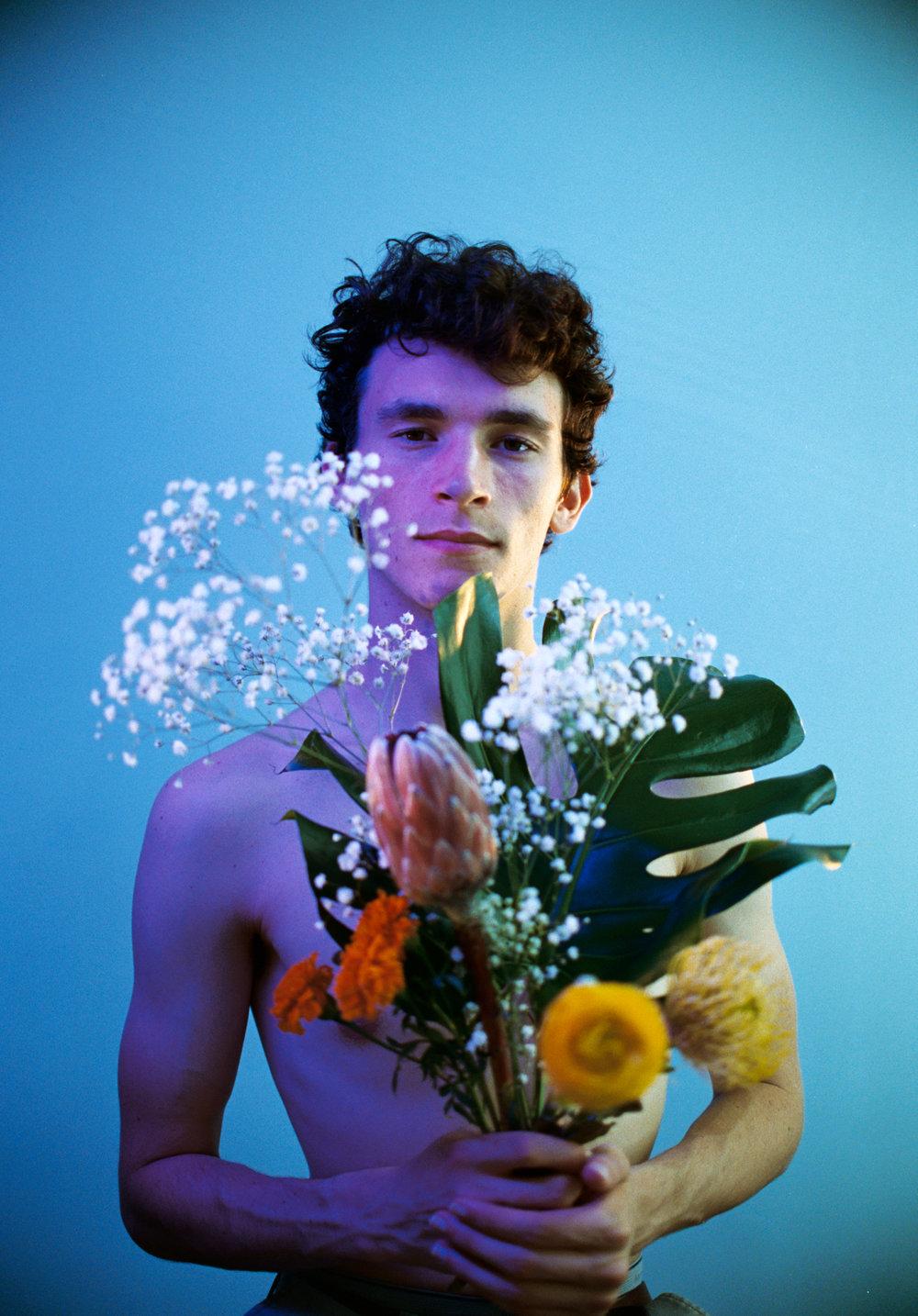 Theo Gray / Filmmaker