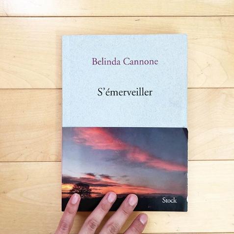192 pages aux  Éditions Stock