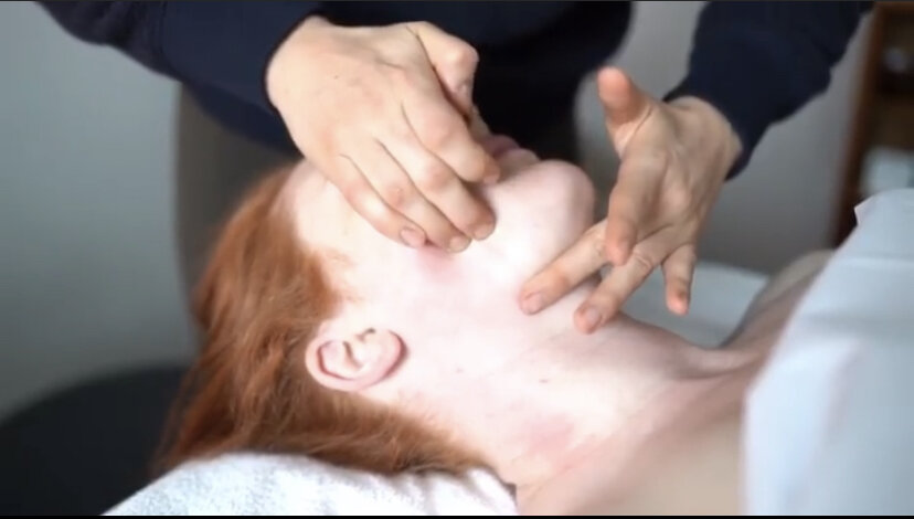 Connective Tissue Massage Healing Skin From The Inside Out Wholelistic Esthetics In Martinsburg Wv