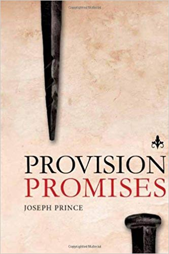 PROVISION PROMISES   This book is packed with Scripture that will help you renew your mind to what is possible when you partner with God and His promises!