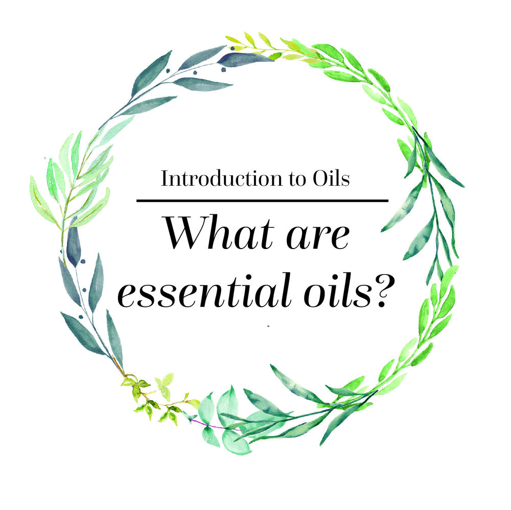Intro to Oil Questions-01.jpg