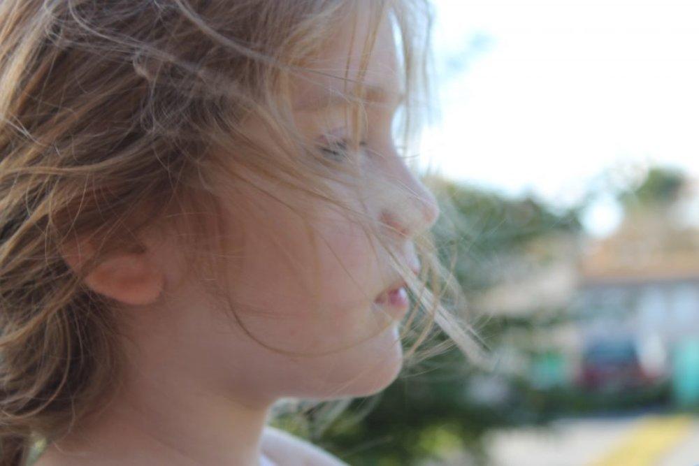 carewind.jpg