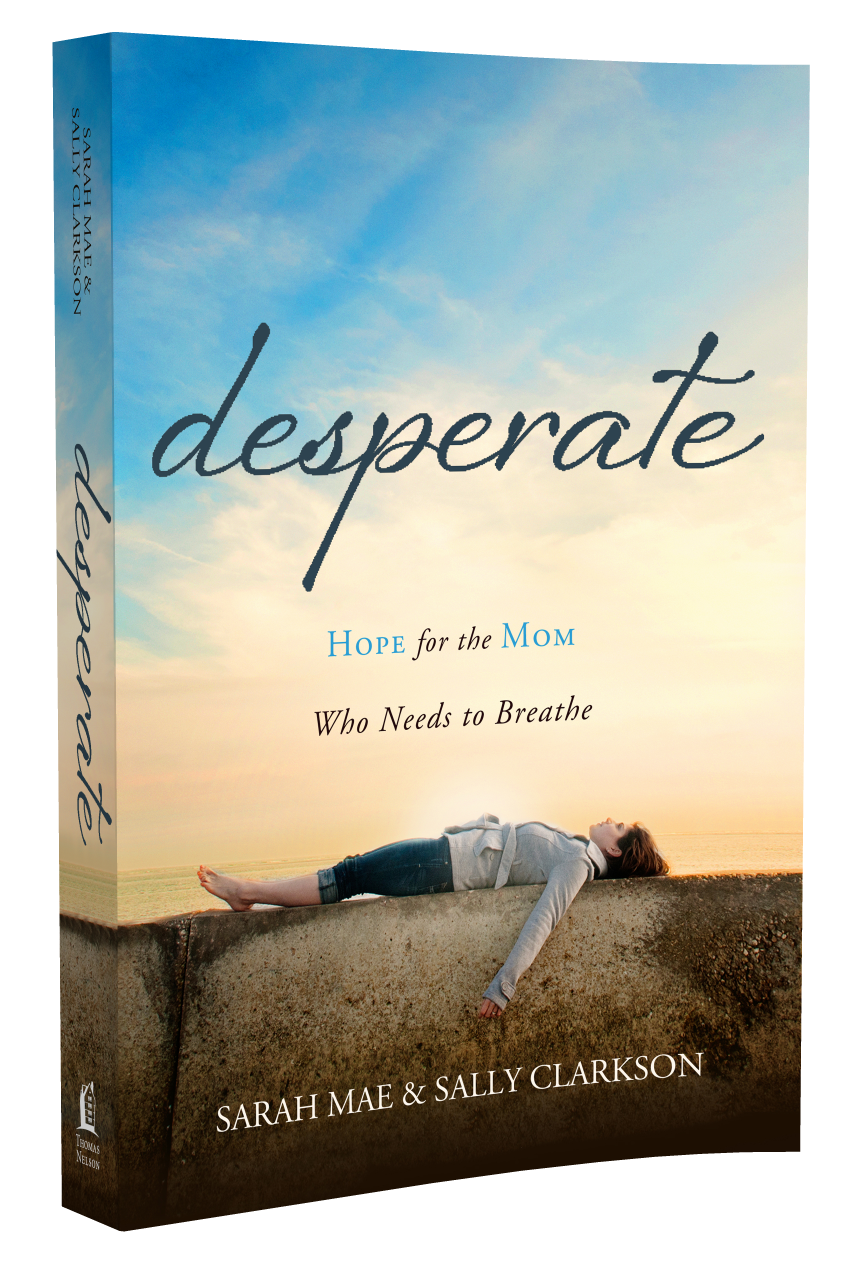 """I hold these pages, words of Sarah Mae's and Sally's, that are a gift to every mother, that welcome mothers everywhere out of hiding and loneliness and into a fellowship of sisters and mentors, that will make you feel not alone, that will make you feel that there is real God-given hope."" - Ann Voskamp, New York Times best-selling author of One Thousand Gifts"