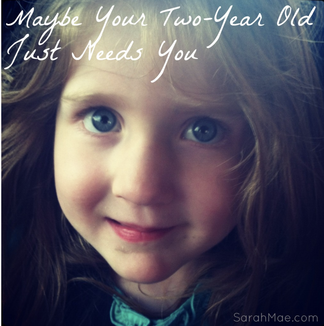 Maybe Your Two Year Old Just Needs You Sarah Mae