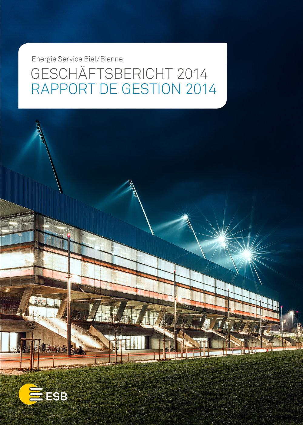 Geschäftsbericht Energie Services 2015