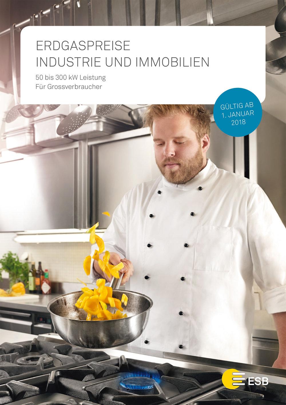 d_01_2018_Preisblatt_Erdgas_Industrie_Immo.indd