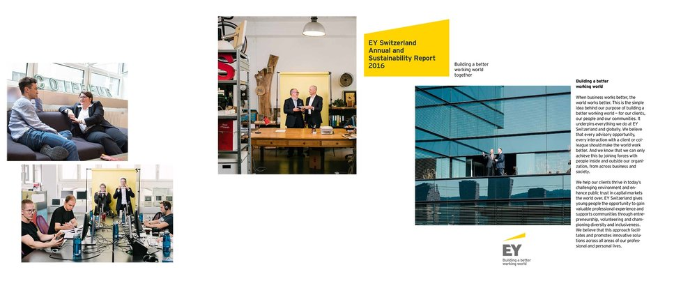 CHCR Report2016_komplett_v15b.pdf