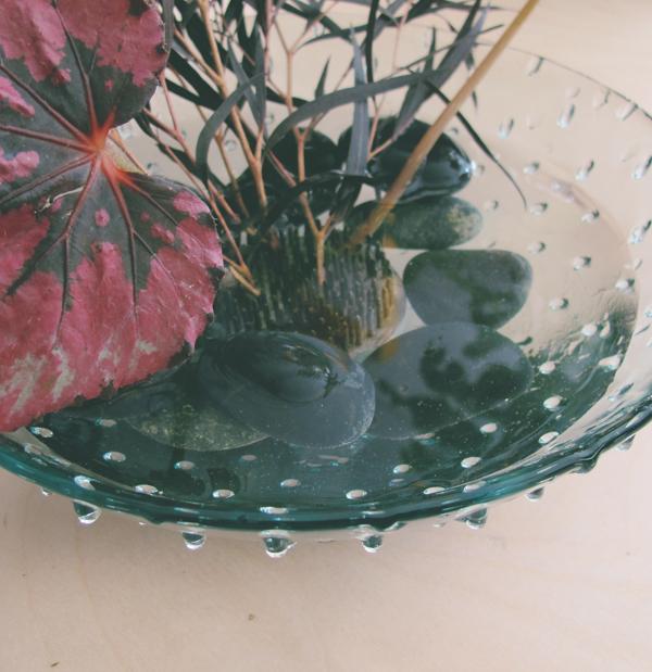 frog-arrangement7.jpg