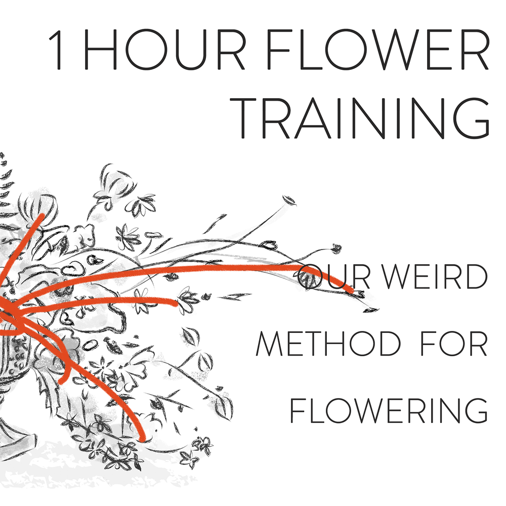 Flower demo.png
