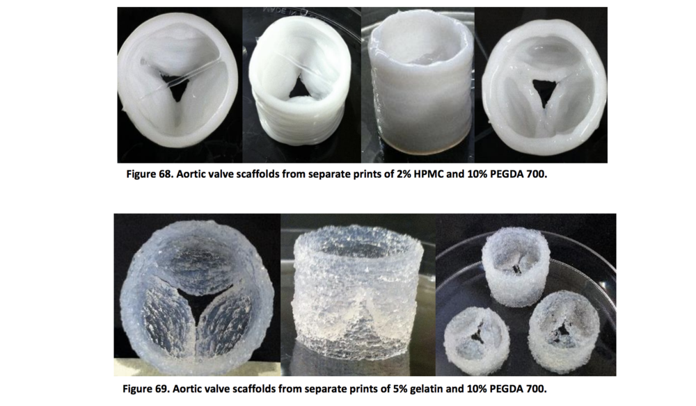 Allevi bioprinter bioprint aortic and cardiac scaffolds