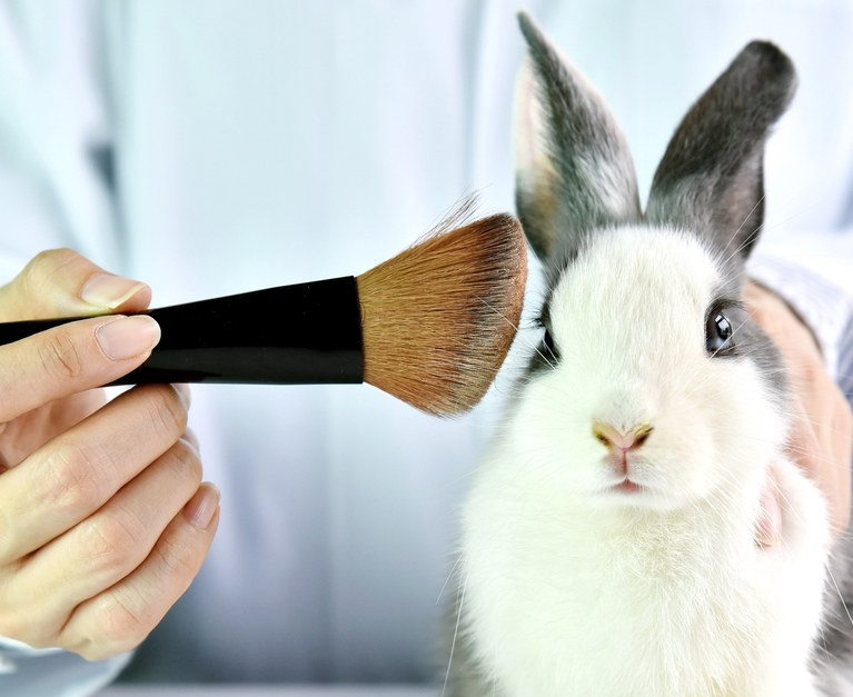 allevi ban cosmetic animal testing 3d bioprint instead.jpg