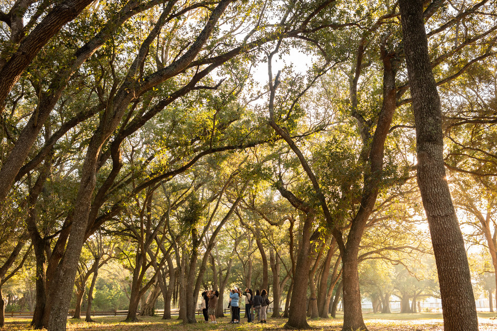 Kendall Indian Hammocks Park