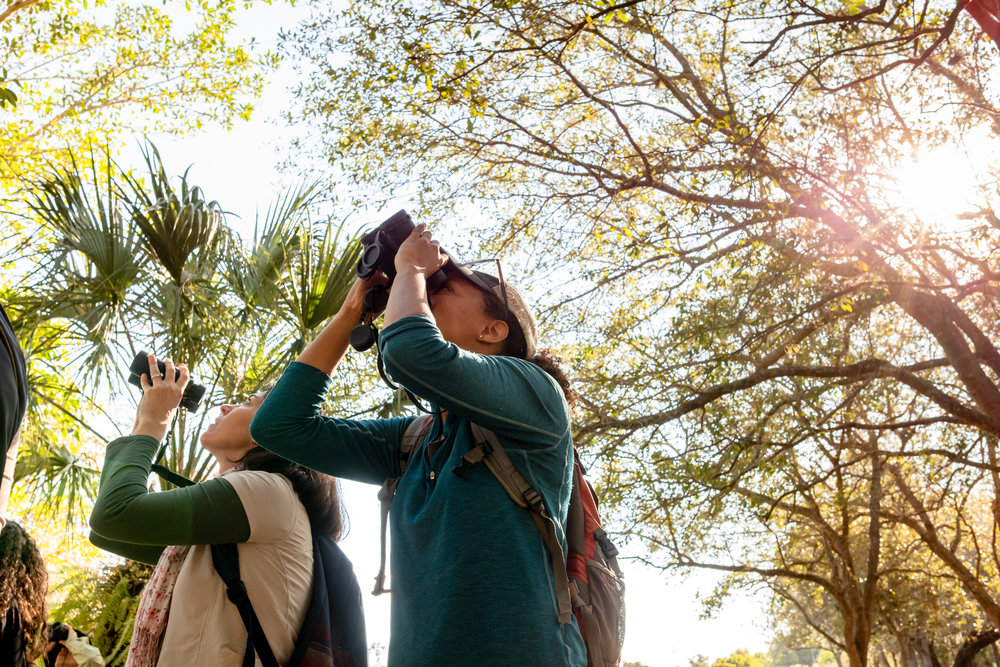 Phoebes Ana (left) and Melissa (right) spotting warblers.