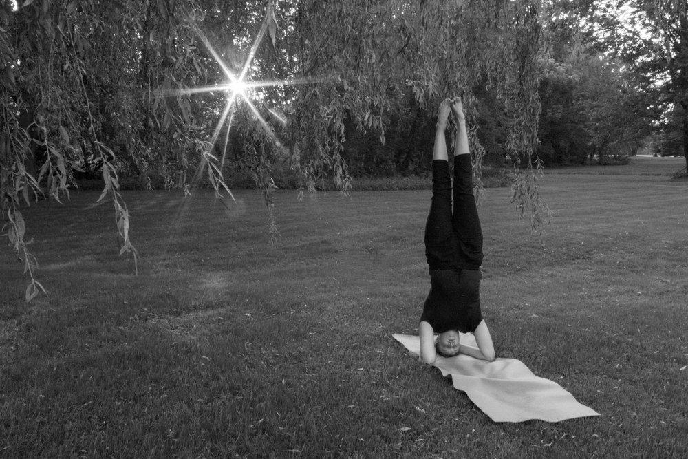 yogiivory-247.jpg