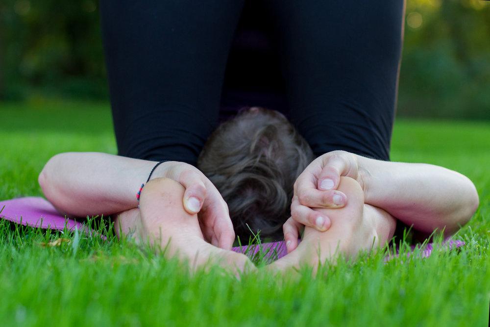 yogiivory-299.jpg