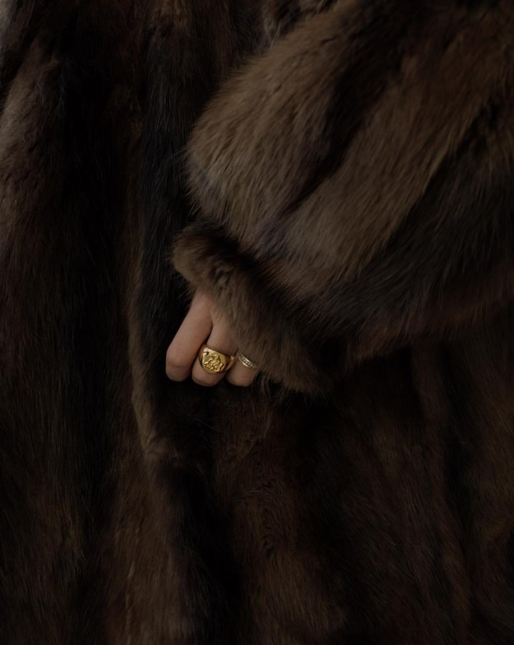 @gioiagiustino - Wearing Diploria Unisex Signet Ring.