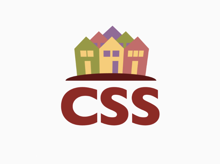 New Website - CSS Logo.jpg