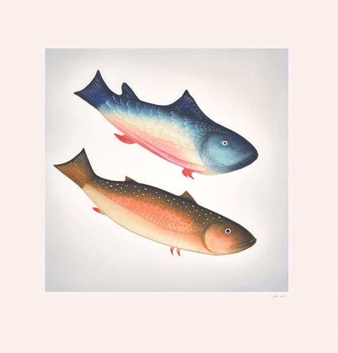 Pitaloosie SailaDiving Fish - 2014etching & aquatint72.5 x 69.5 cm$800