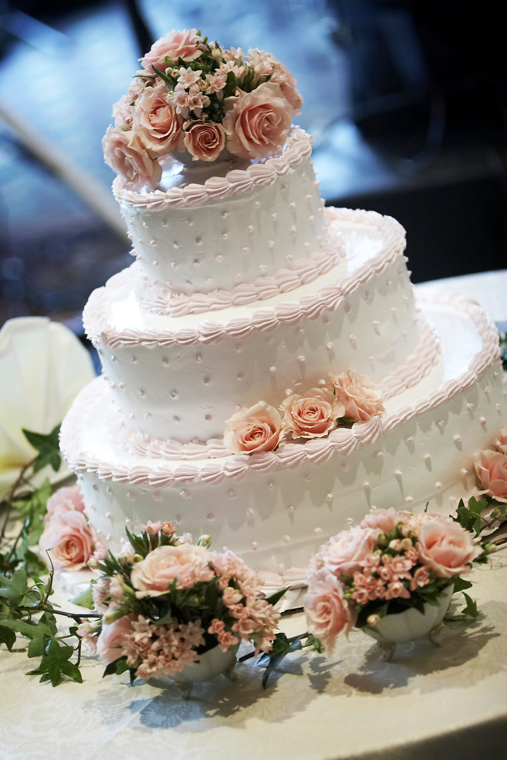 TCP Wedding Cake classic border dots and roses.jpeg