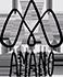 Amano Mamacha