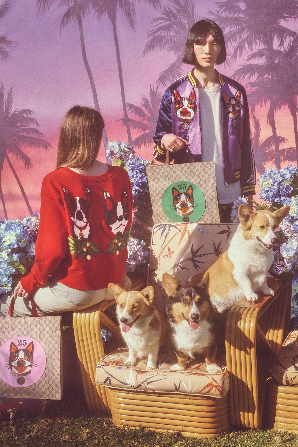 gucci-chinese-new-year-fashion-campaign-petra-collins-1.jpg