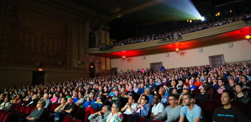 Screenings audience.jpg