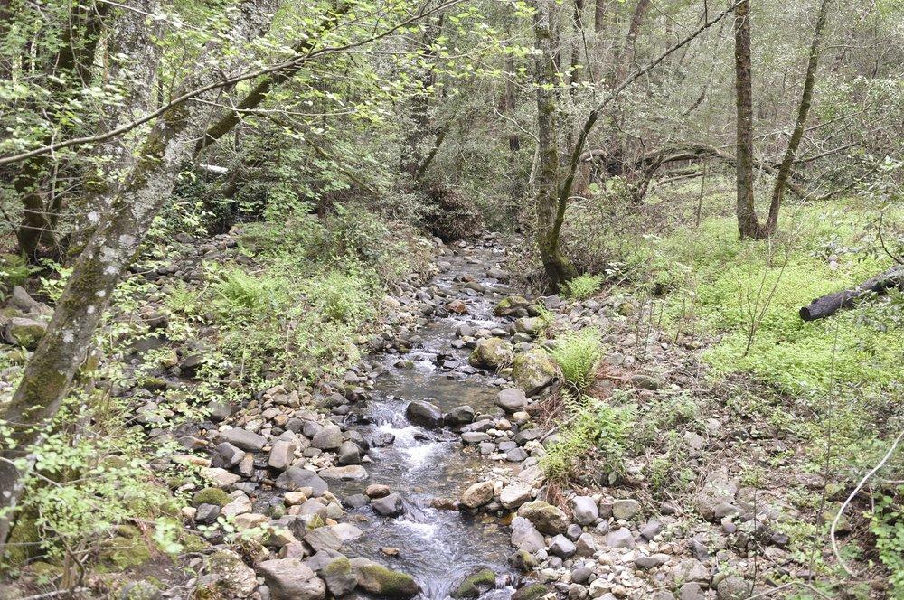 4850_Redwood_Rd_44.jpg