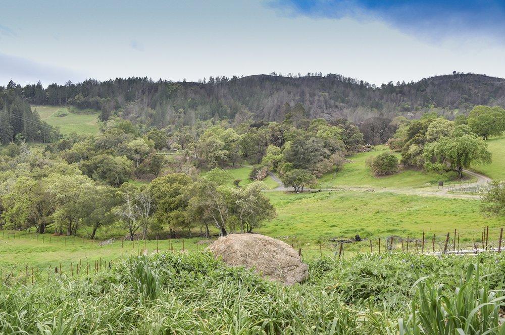 4850_Redwood_Rd_38.jpg