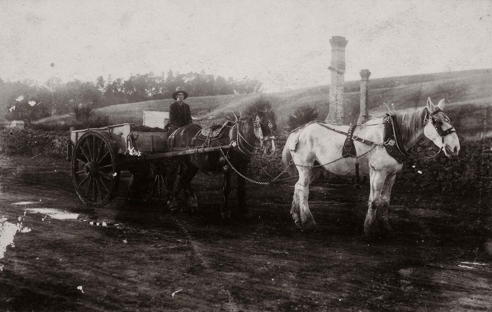 Carrier's cart on the Great South Road, Wiri, 1910.   (Courtesy Mrs Mary Crichton/Auckland Libraries Footprints 03690)