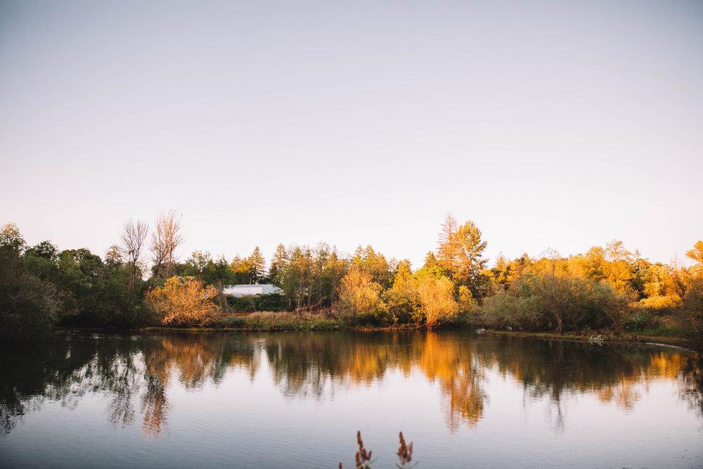 HVR Lake.jpg