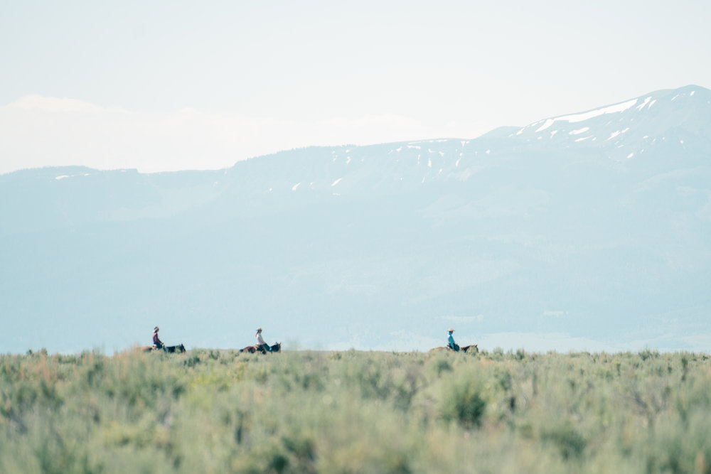 Melissa DiNino and cowboys riding through the Big Sky and sage of Montana's Centennial Valley.