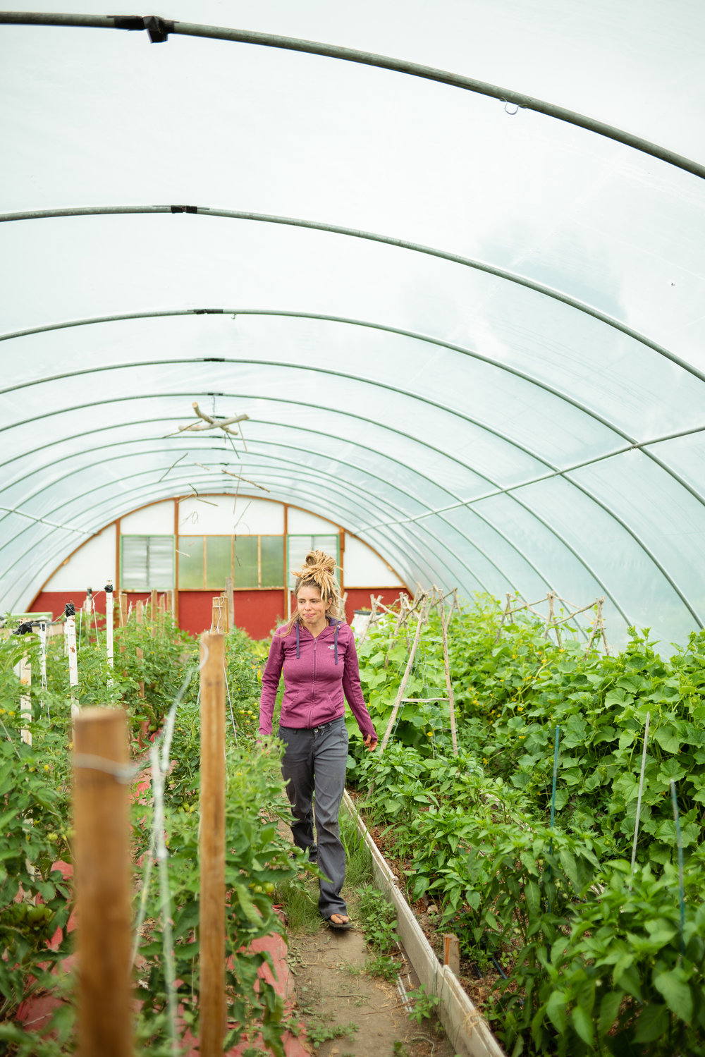 Kacy Senger surrounded by tomatoes at Sprig & Root Farm in Clarkston, Montana.
