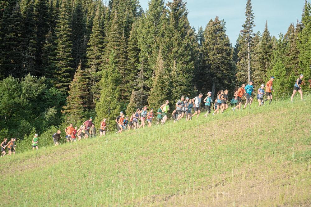 Runners at Bozeman Running Co. racing of Crosscuts at Bridger Bowl just north of Bozeman, Montana.