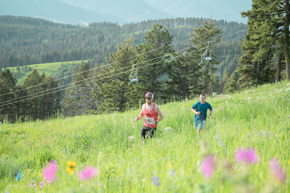 Runners at Bozeman Running Co. racing of Crosscuts at Bridger Bowl just north of Bozeman, Montana. Lots of wildflowers.