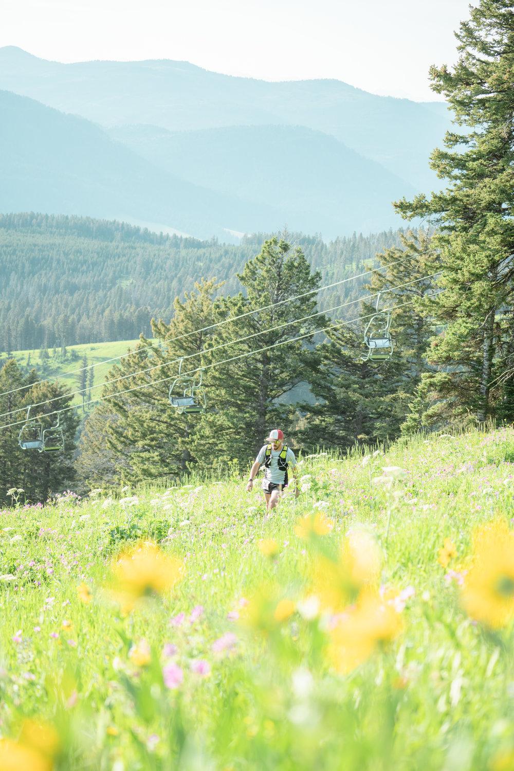 Runner at Bozeman Running Co. racing of Crosscuts at Bridger Bowl just north of Bozeman, Montana. Lots of wildflowers.