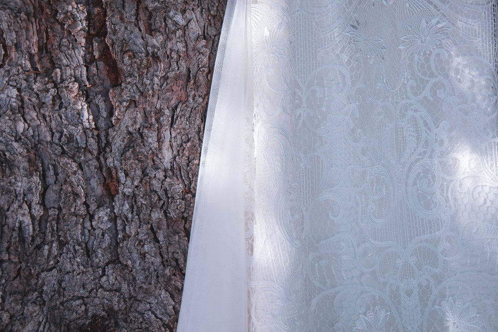 Wedding dress photographed against a tree in Montana.