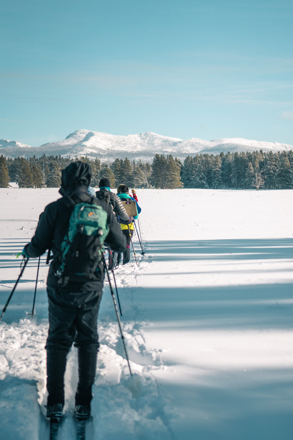 Cross country skiing through the Pelican Valley of Yellowstone National Park.