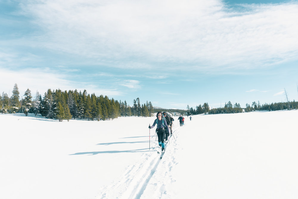 Skiing through the Pelican Valley, Yellowstone National Park.