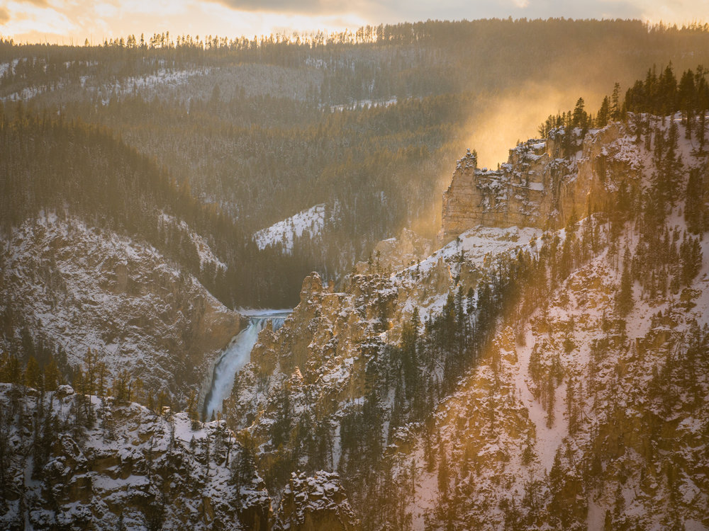 The Lower Falls of the Yellowstone. Yellowstone National Park.