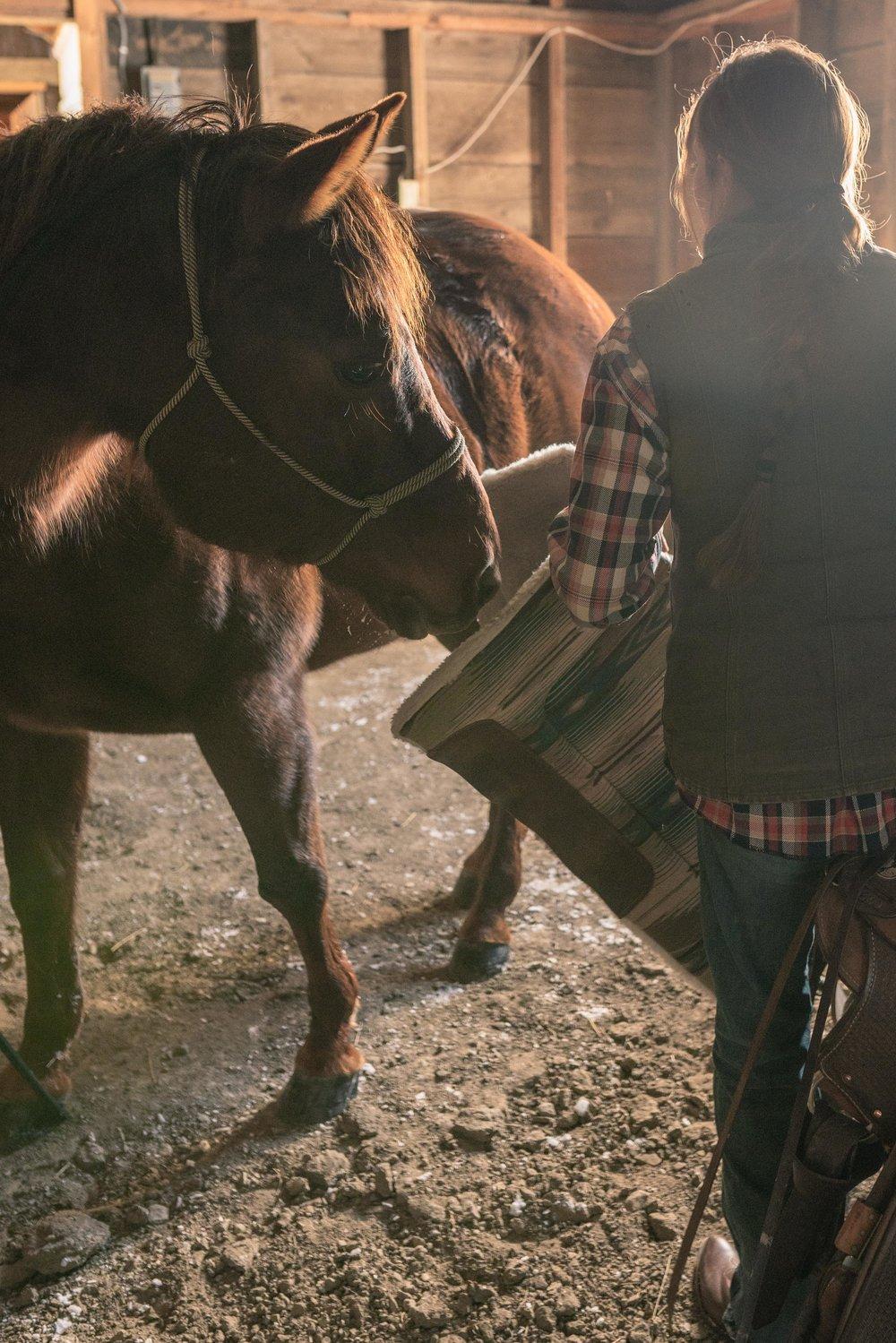 Jenna Flatgard wearing Tecovas while working her horse in her barn in eastern Montana.